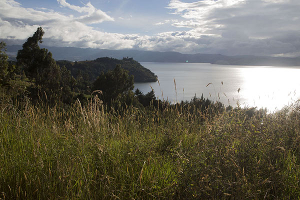 Picture of Lago de Tota (Colombia): View over Lake Tota with afternoon sun