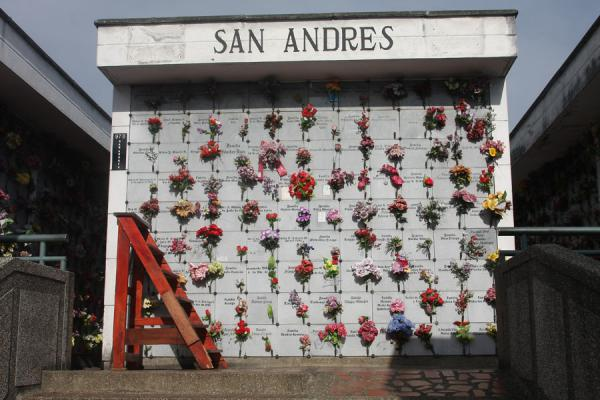 San  Andrés wall with remains and flowers | San Pedro Cemetery Medellín | Colombia