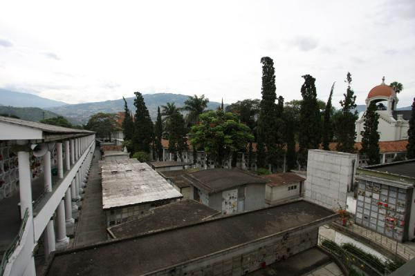 Picture of San Pedro Cemetery Medellín (Colombia): Part of San Pedro Cemetery seen from above
