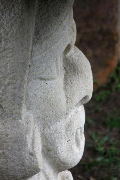 Close-up from above of the face of a statue in mesita B at San Agustín | Archeological Park San Agustín | Colombia