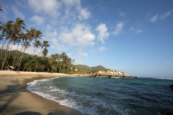Palmtrees and beach in Parque Nacional Tayrona | Parque Nacional Tayrona | Colombia