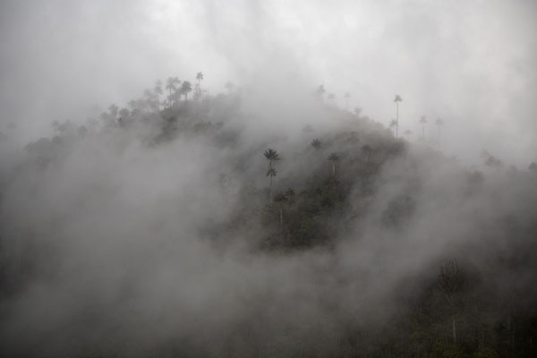 Clouds swirling around a mountain top near Marquetalia | Peace road to Marquetalia | Colombia