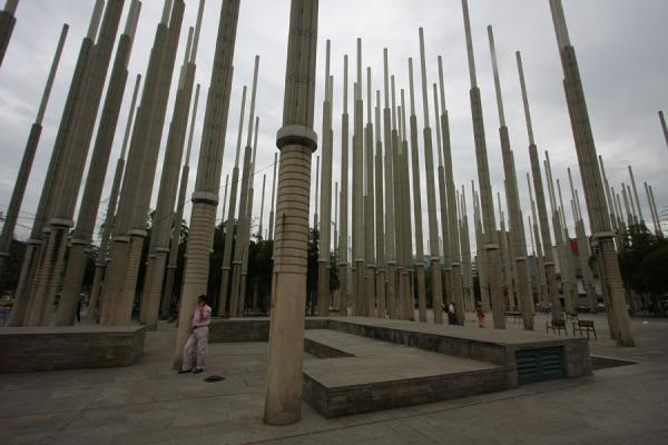 Making a phone call from the forest of poles at Plaza de Cisneros | Plaza de Cisneros | Colombia