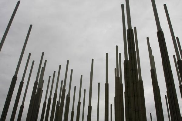 Part of the forest of poles at Cisneros Square | Plaza de Cisneros | Colombia