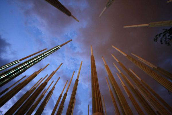 Looking up towards the sky with some of the poles | Plaza de Cisneros | Colombia