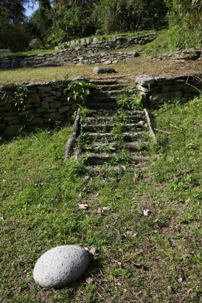 Stairs of stone made by the Tayrona | Pueblito Chairama ruins | Colombia
