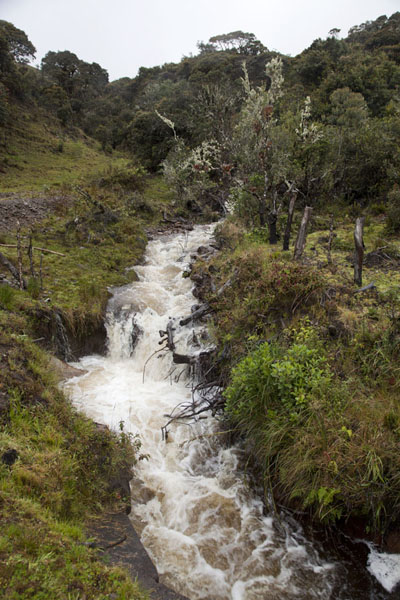 River rushing down through the landscape | Paysage du Puracé | Colombie