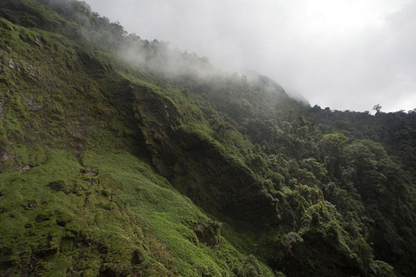Photo de The lush vegetation on the mountains right next to the Salto de CandelasSalto de Candelas - Colombie
