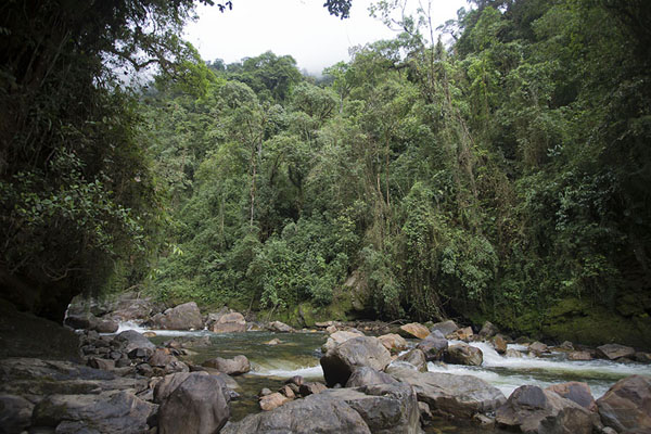 Foto van The Cusiana river just downstream from the Salto de CandelasSalto de Candelas - Colombia