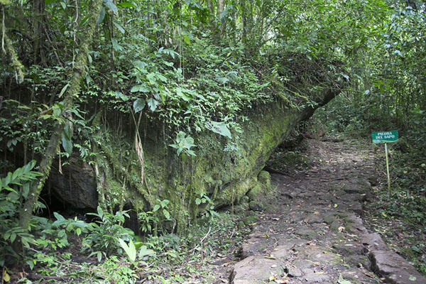 Picture of Sapo rock on the way to the waterfall