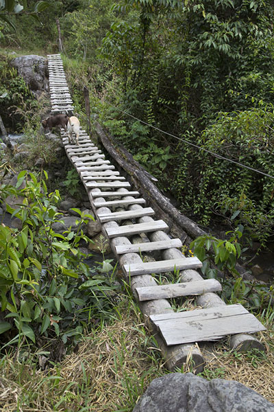 One of the bridges over rivers on the way to Salto de Candelas waterfall | Salto de Candelas | Colombia