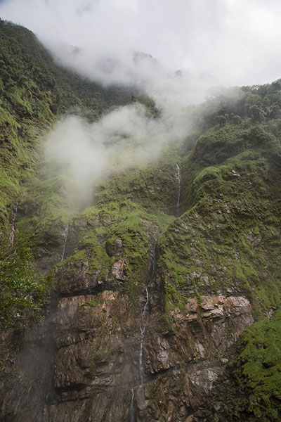 Photo de Looking up the mountain from which water comes downSalto de Candelas - Colombie
