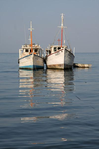 Picture of Taganga (Colombia): Fishing boats in the early morning light in Taganga