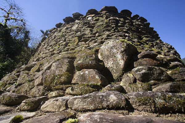 Photo de Looking up one of the stone platforms of the higher central section of Ciudad PerdidaCiudad Perdida - Colombie