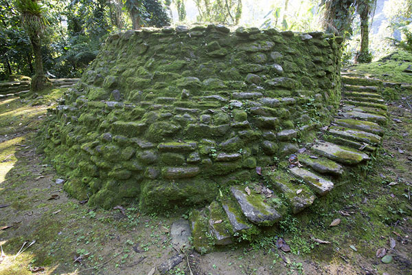 Photo de Moss-covered stone platform in the lower part of the central section of Ciudad PerdidaCiudad Perdida - Colombie