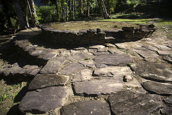 Photo de Circular stone platform in the trading area of Ciudad Perdida, near the entranceCiudad Perdida - Colombie