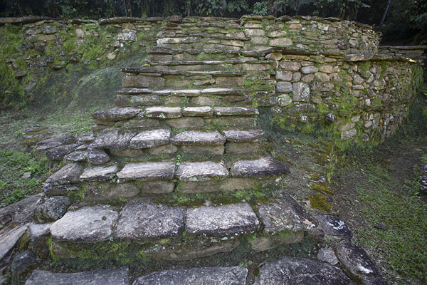One of the stone platforms on which a wooden dwelling once stood, in the first sector of Ciudad Perdida | Teyuna | 哥伦比亚