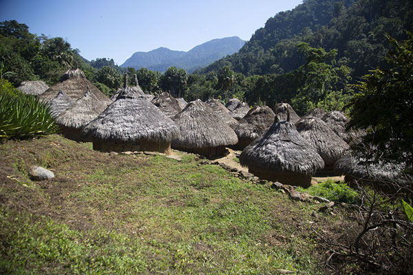 Kogi village with adobe and straw huts | Teyuna | 哥伦比亚