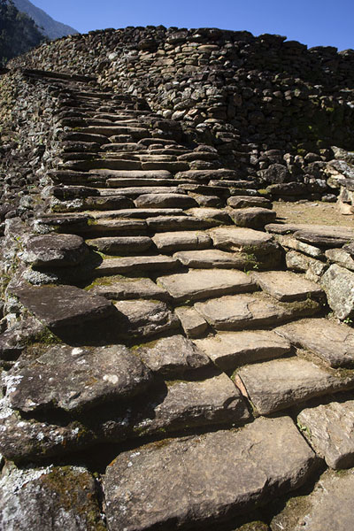 Stairs leading up to one of the stone platforms in the central section of Ciudad Perdida | Teyuna | Colombia