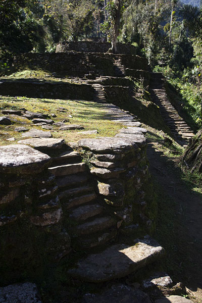 Some of the stone platforms in the central section of Ciudad Perdida | Teyuna | Colombia