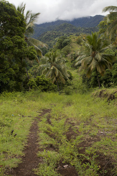 Trail over the hills between Mutsamudu and Hombo | Hombo hike | Comoros