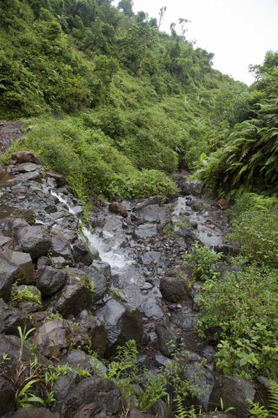 A stream coming down from the mountains | Mount Ntringui hike | Comoros