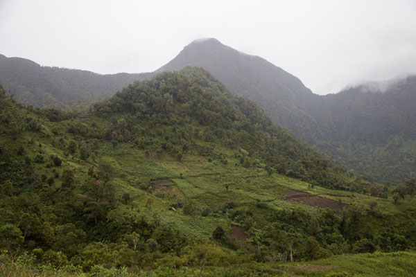 Picture of Mount Ntringui is the highest point of Anjouan islandMount Ntringui - Comoros