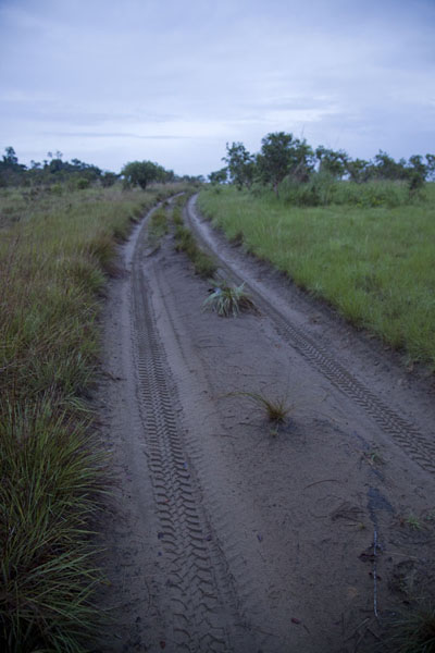 The sandy track between Gabon and Congo | Vaga border crossing | 刚果