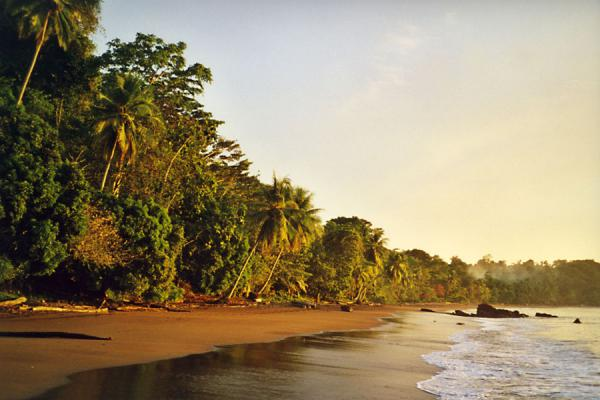 Picture of Bahía Drake (Costa Rica): Beach of Bahia Drake