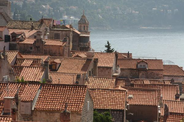 Roofs of Dubrovnik seen from the city wall | Dubrovnik | Kroatië