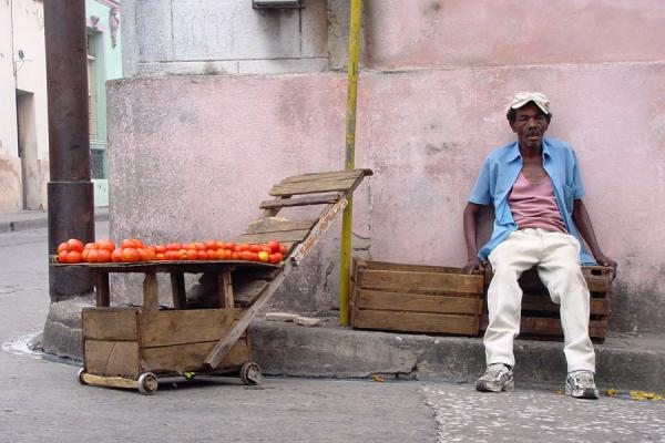 Picture of Cuban people (Cuba): Cuban selling tomatoes in the street