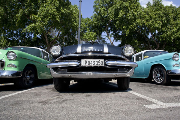Picture of Classic cars parked in a row in Havana - Cuba - Americas