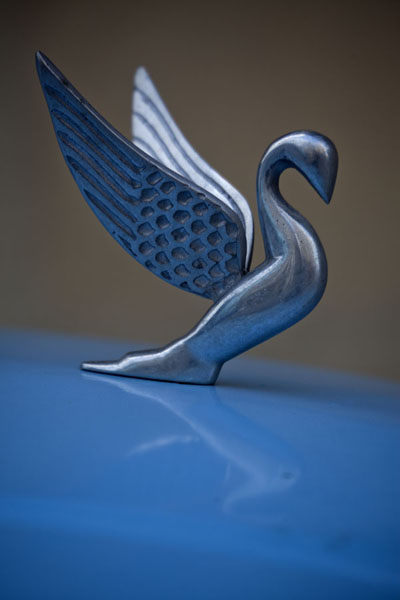 Foto van Detail of a bird on top of a blue vintage carHavana - Cuba