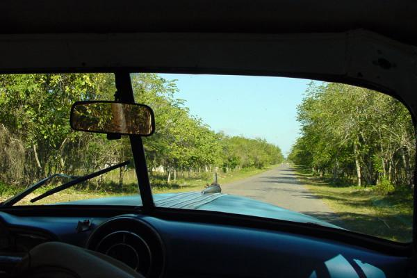 Picture of María La Gorda (Cuba): View from a Cuban car