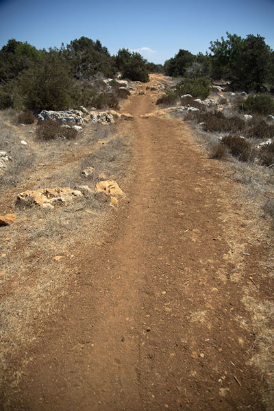 One of the many trails criss-crossing Akamas peninsula | Akamas Peninsula | Cyprus