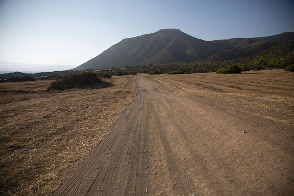 Picture of One of the gravel tracks running over Akamas peninsula - Cyprus - Europe