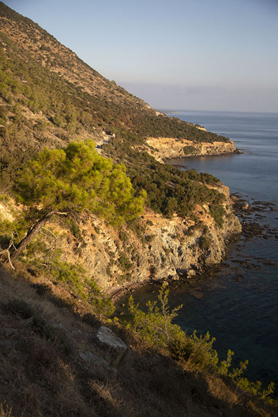 Foto de The rocky coast at the southeast side of Akamas peninsulaAkamas - Chipre