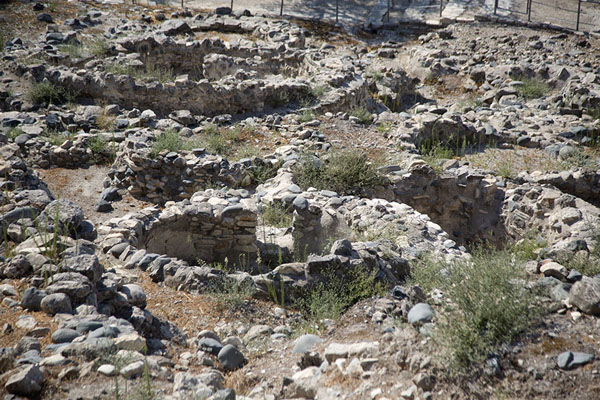 The cylindrical houses of the neolithic Choirokoitia settlement | Choirokoitia | Cyprus