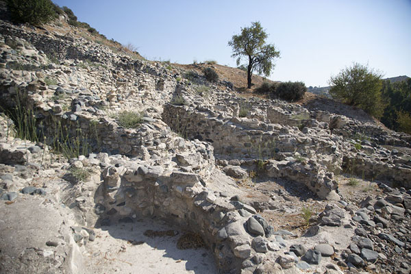 View of the ruins of the neolithic cylindrical buildings in Choirokoitia | Choirokoitia | Cyprus
