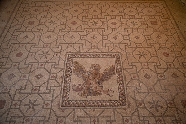 Foto van The rape of Ganymede by Zeus disguised as an eagle, House of DionysosPafos - Cyprus