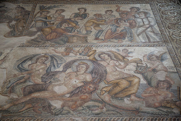 Overview of mosaics in the House of Aion with scenes depicting Greek mythology - 塞浦路斯