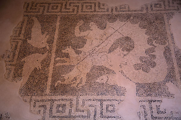 Foto van Black and white pebble mosaic depicting Scylla in the House of DionysosPafos - Cyprus