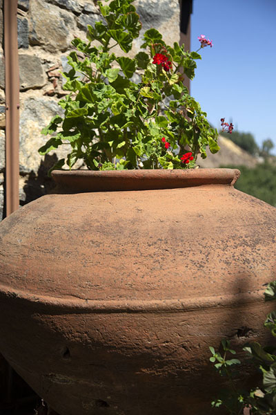 Huge pots with flowers can be found everywhere in the Troodos villages | Troodos bergdorpen | Cyprus