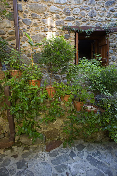 Pots and plants on stairs at a stone house in Kakopetria | Troodos bergdorpen | Cyprus