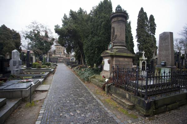 Picture of Vyšehrad cemetery (Czech Republic): Lane in Vyšehrad cemetery with tombs and the Slavín in the background