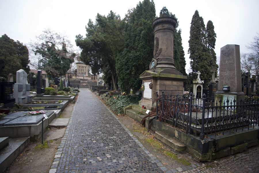 Picture of One of the lanes in Vyšehrad cemeteryPrague - Czechia