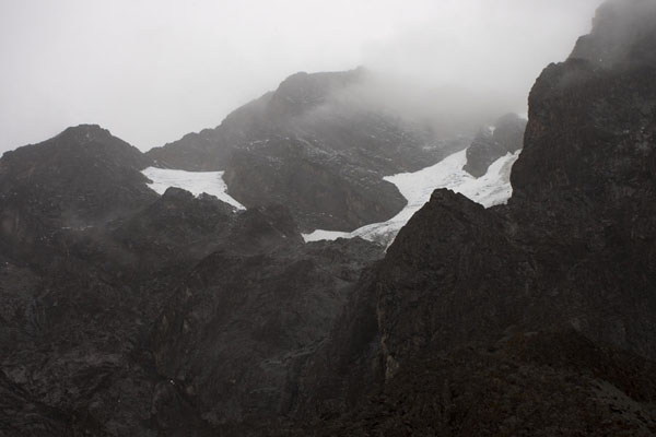 Looking up towards Pic Margherita, glaciers partly visible, but the peak hidden in the clouds | Montagne Rwenzori | Rep. Democratica del Congo