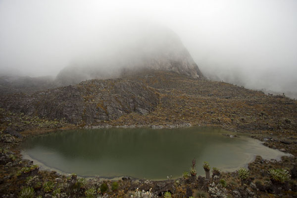 View of Lac Gris with misty mountains in the background | Montagnes Rwenzori | Rep. Démocratique du Congo