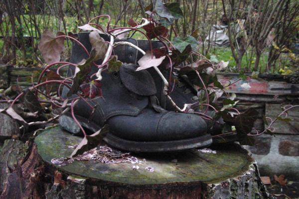 A popular way of planting flowers: in used boots | Christiania | Denmark
