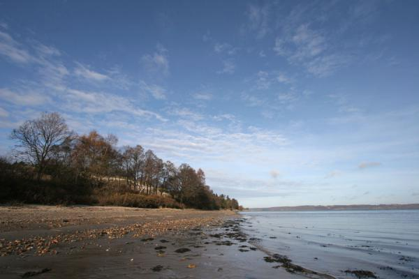 Photo de Coastline near Vejle Fjord: the northern shore in a distanceVejle - le Danemark